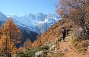Saas Fee autumn - ski instructor course BASI