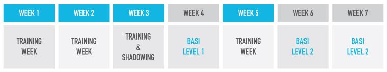Argentina BASI Gap course schedule